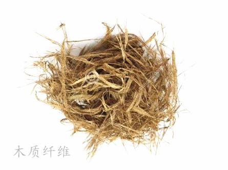 木漿 植物纖維
