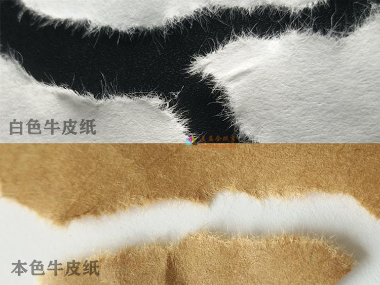 白色牛皮紙與本色牛皮紙纖維圖.jpg
